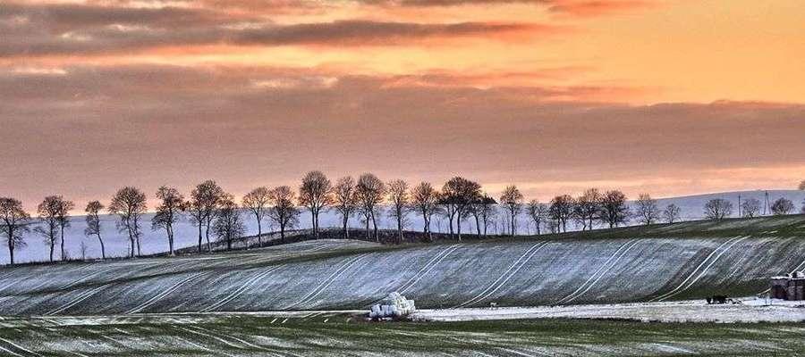 Zdjęcie Tygodnia: Malowniczy krajobraz Kokoszewa