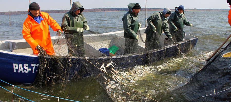 Do rybaków znad Zalewu trafiły miliony złotych