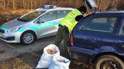 Kierowca skody znalazł krajankę tytoniową.... pod drzewem