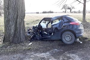 Śmiertelny wypadek pod Ornetą. Samochód osobowy uderzył w drzewo