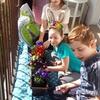Dzieci kontra koronawirus