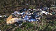 Leśny śmieciarz ukarany mandatem