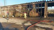 Lali wodę w Wielkanocną Niedzielę. Pracowite święta strażaków z powiatu kętrzyńskiego [GALERIA]