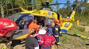 Spadające drzewo uderzyło w pracownicę Zakładu Usług Leśnych