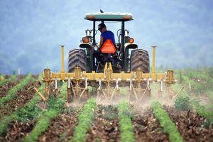 Dopłaty 2020: milion wniosków od rolników już w ARiMR