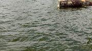 Na jeziorze Wałpusz wywróciła się łódź żeglarska