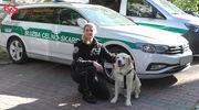 Psy w służbie skarbowej