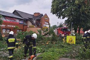 Burza powaliła drzewa, zerwała dach [Zdjęcia]