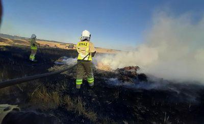Ryn: Wielki pożar ścierniska i bel słomy, ogień gasiło kilkudziesięciu strażaków