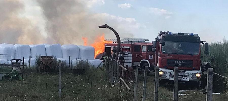 W pożarze w Saminie spłonęło ponad 200 balotów słomy
