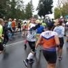 Iławski Półmaraton i Ja też lubię biegać już w ten weekend [komunikat]