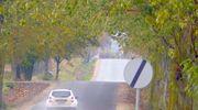 Zarząd Dróg Powiatowych ogłosił przetargi na remonty trzech dróg