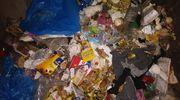 Jak segregujemy śmieci? Urzędnicy kontrolują nasze odpady