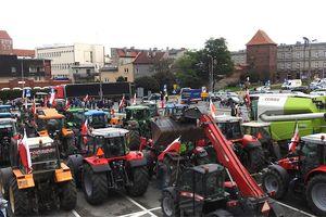"""Rolnicy z powiatu nowomiejskiego blokowali """"krajową piętnastkę"""" i wystosowali stanowisko rolników w kwestii """"piątki dla zwierząt"""" do Sejmu RP"""