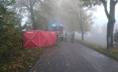Tragedia pod Reszlem. Kierowca nie przeżył uderzenia w drzewo [ZDJĘCIA]