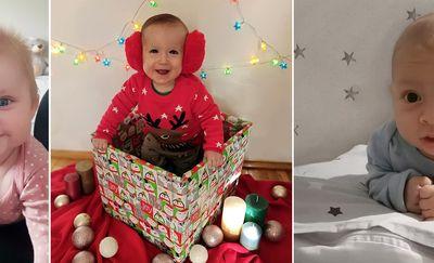 Świąteczne Brzdące: Pola Rodź, Mikołaj Misyło, Oliwier Donawagis
