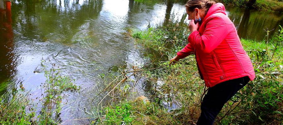 Pani Sabina pokazuje miejsce nad Drwęcą, gdzie w wodzie leżał człowiek