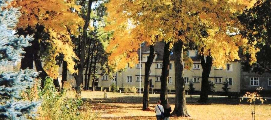 Jesień w parku w Bartoszycach.
