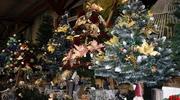 W Bricomarche Iława kupisz najpiękniejsze dekoracje świąteczne [foto]