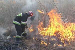 Strażacki tydzień. Płoną suche trawy