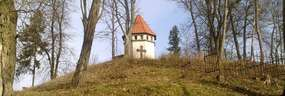 Cmentarz ewangelicki w Rynie (XIX wiek)