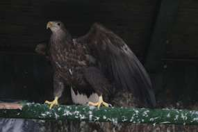 Rezerwat przyrody Krutynia Dolna