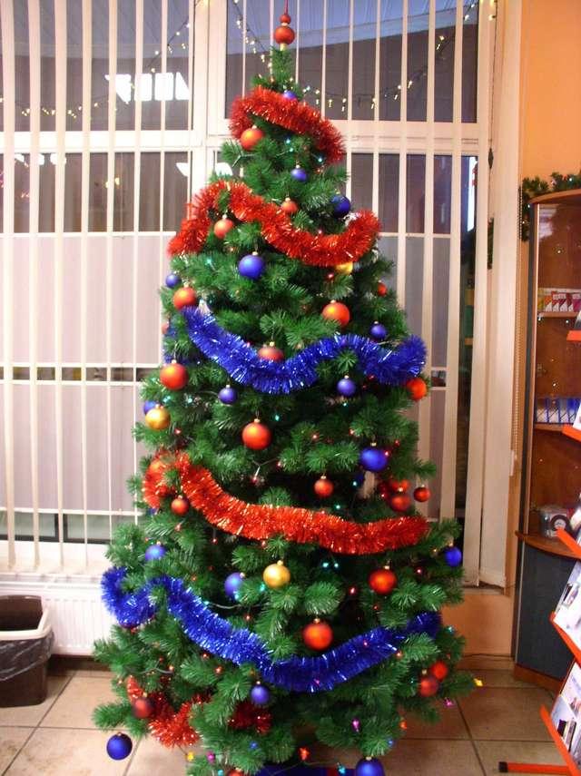 Kup sobie świąteczne drzewko - full image