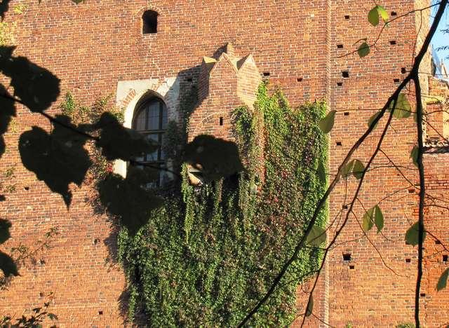 Toaleta Kopernika na olsztyńskim zamku. Widok od strony murów zamowych - full image