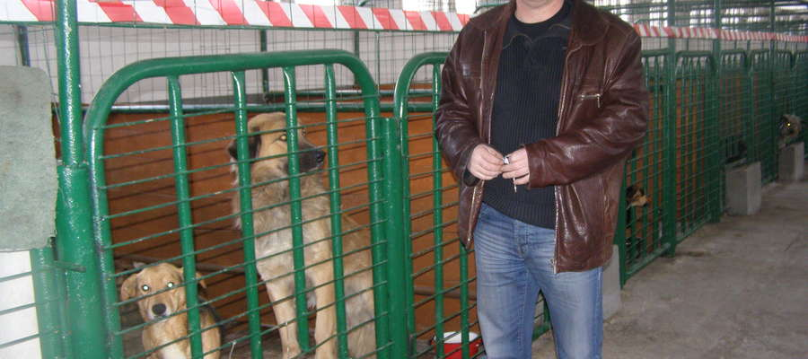 W schronisku w Ruskiej Wsi przebywają psy z terenu gminy Ełk oraz psy przetransportowane z azylu w Siedliskach