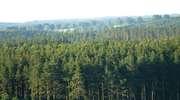 Park Krajobrazowy Puszczy Rominckiej