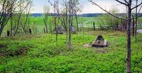 Cmentarz ewangelicki w Zameczku