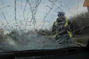 Śmiertelny wypadek na DK16. Auto zderzyło się z łosiem