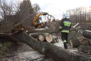 Powalone drzewa i zerwane dachy. Wichura nad Warmią i Mazurami!