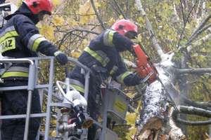 Gwałtowne burze nad Warmią i Mazurami. Połamane drzewa, zerwane linie. Ponad 1500 osób bez prądu
