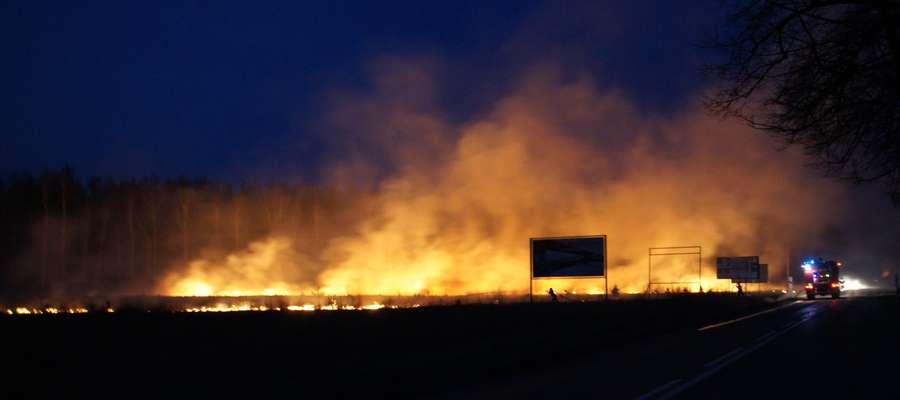 Strażacy gaszą pożar suchej trawy w Komornikach