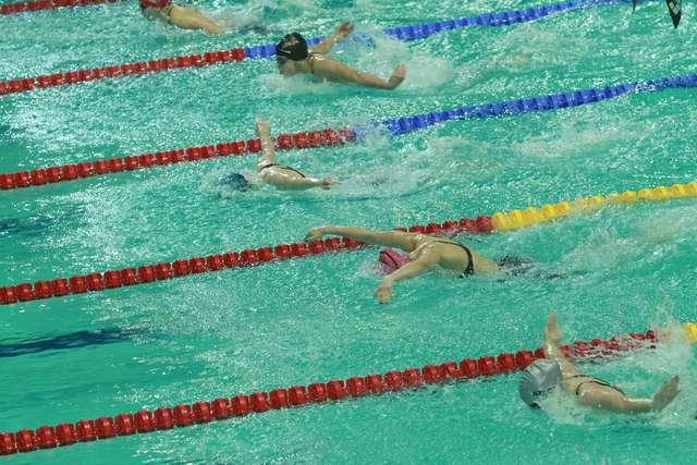 Pływanie z płetwą w Olsztynie  - full image