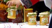 Pszczoły marzną i głodują. Miodu będzie mniej