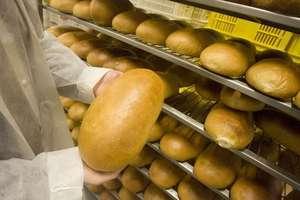 Święto Chleba w Pieckach