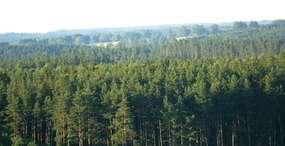 Rezerwat przyrody Struga Żytkiejmska