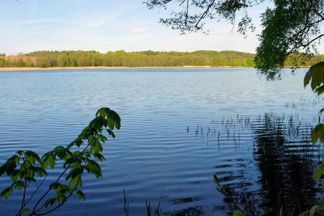 Jezioro Czarne słynie z wyjątkowo czystej wody. - full image