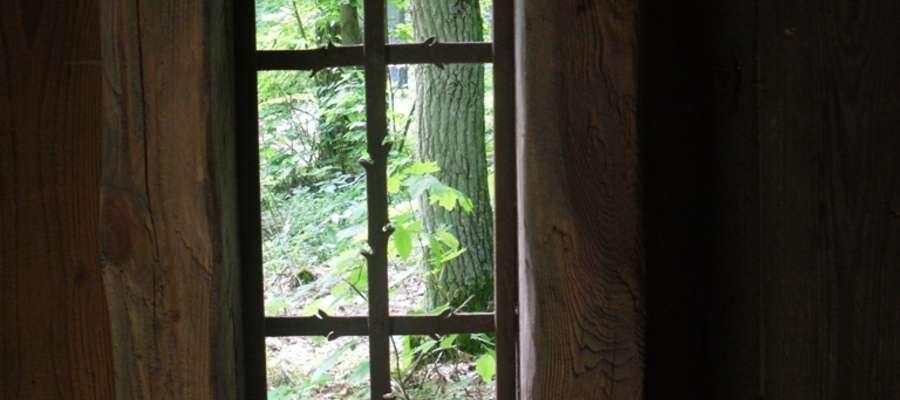 Mazurskie aleje drzew i drzewa - pomniki