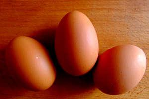 Uwaga! Jajka w jednym z popularnych supermarketów mogą mieć salmonellę