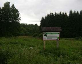 Rezerwat przyrody Sołtysek
