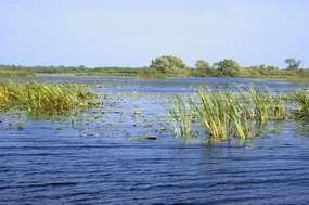 Rezerwat Przyrody Jezioro Nidzkie
