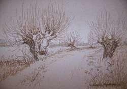 Wystawę rysunków Lucyny Niepokorowicz będzie można oglądać do 5 kwietnia