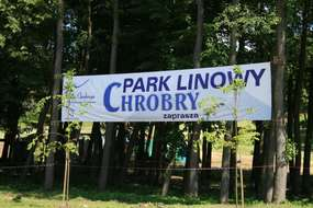 Park Bażantarnia w Elblągu