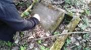 Cmentarz ewangelicki w Kruklinie