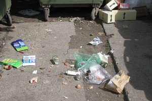 Wraz ze śmieciami znikną też kontenery?