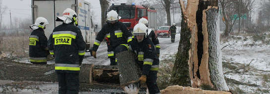 Strażacy z OSP w Bisztynku usuwają skutki orkanu Ksawery.