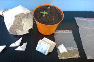Kolejne zarzuty w sprawie handlu narkotykami